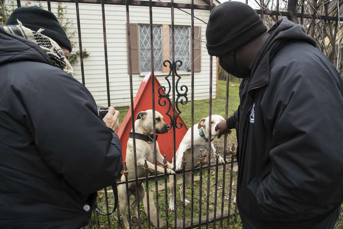 SPCA investigators Jay Chase, left, and D'Questyn Coleman check on a pair of dogs that were reported to be chained up outside a house during recent inclement weather while doing an animal welfare check Saturday, Feb. 13, 2021 in Houston. With frigid temperatures forecast in Texas and the Houston area, the SPCA investigators made their rounds to various parts of the city to check on animals and their well being, and to also give out blankets and give animal owners tips on keeping their animals from the freezing weather.