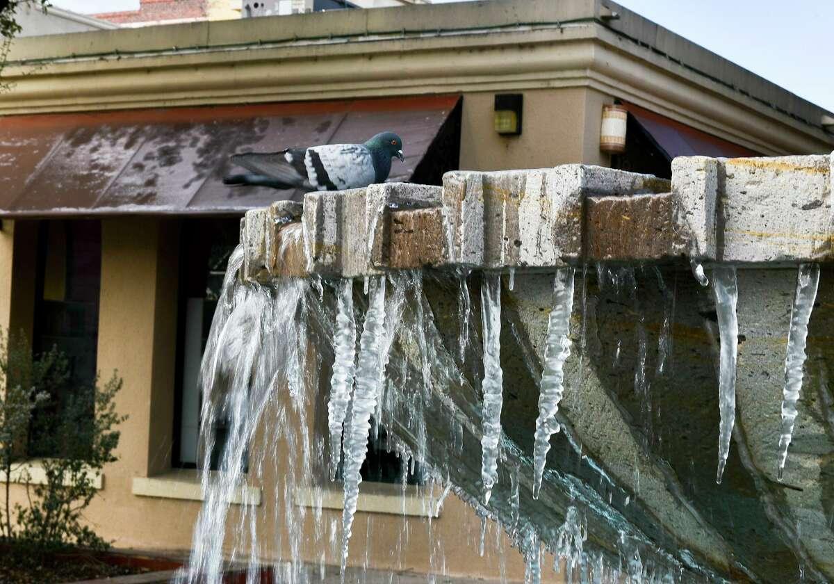 Fuentes afuera del Laredo Center of the Arts parcialmente congeladas el lunes, 15 de febrero del 2021, tras las temperaturas debajo de los 20 grados.