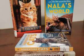 """Dean Nicholson and his cat, Nala have become an Instagram sensation. Their adventures are recounted in """"Nala's World: One Man, His Rescue Cat, and a Bike Ride Around the Globe."""" Traveling through Europe and Asia together, Nala and Dean have made many friends.(Courtesy photo/Manistee County Library)"""