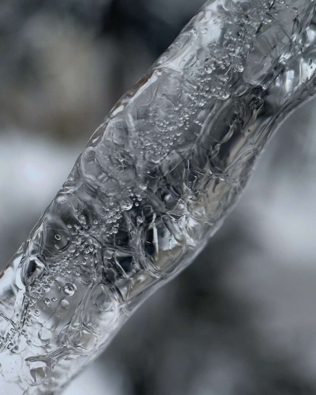 Sean Walmsley of Saratoga Springs took this photo of a juniper branch in his garden that was encapsulated with ice the night before. You can just see the branch as a dark shadow under the ice covering. After taking it, he realized it looked like an ice leg.