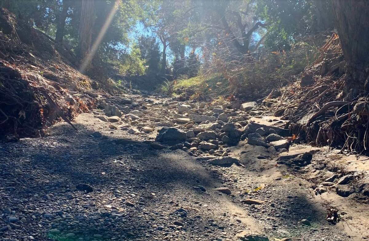 Saratoga Creek, devoid of water because of a multiyear drought. The creek collected some water during a recent atmospheric river, but dried up within days.