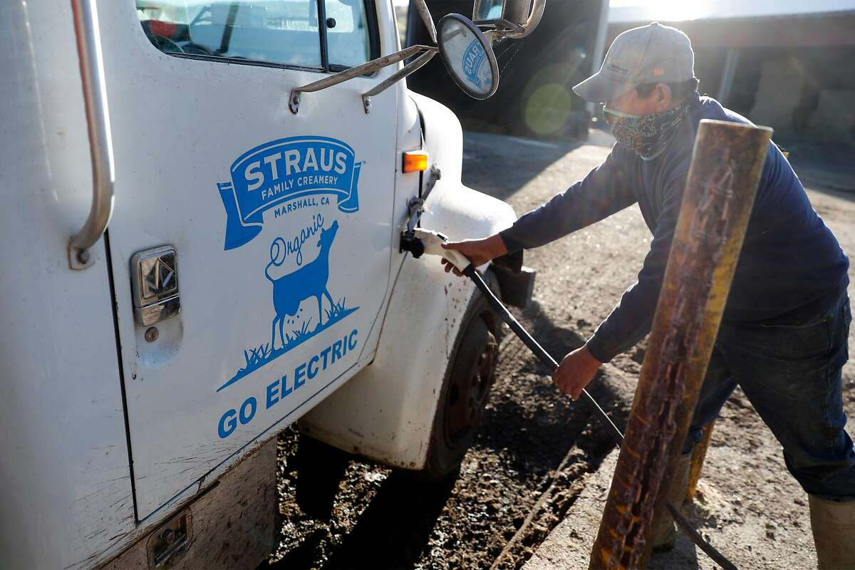 Juan Hernandez unplugs electric truck powered by energy from the methane digester at Straus Dairy Farm in Marshall, Calif., on Wednesday, February 10, 2021.
