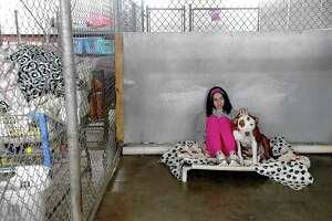 Skylar Wade spends some quality time with Festivus inbetween kennel work at the Humane Society of Southeast Texas, which has been without water since Monday. The shelter has been reaching out through social media for donations to help provide drinking water for the animals, as well as water to clean. Photo made Thursday, February 18, 2021 Kim Brent/The Enterprise
