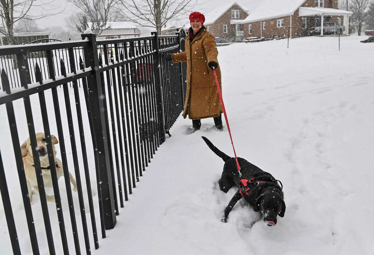Karen Ramge, of Myersville, Md., takes her yellow lab Remington, left, and black lab Ellie, out to her yard during a snowstorm on Febr. 18, 2021.