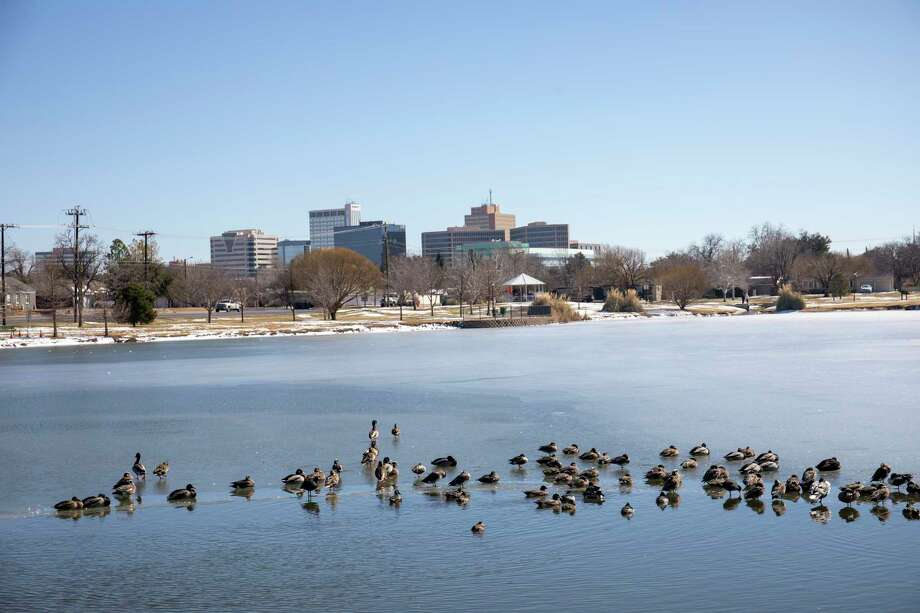 Ducks have found open water as the sun shines Friday, Feb. 19, 2021 at Wadley-Barron Park.   Jacy Lewis/ Reporter-Telegram Photo: Jacy Lewis/ Reporter-Telegram