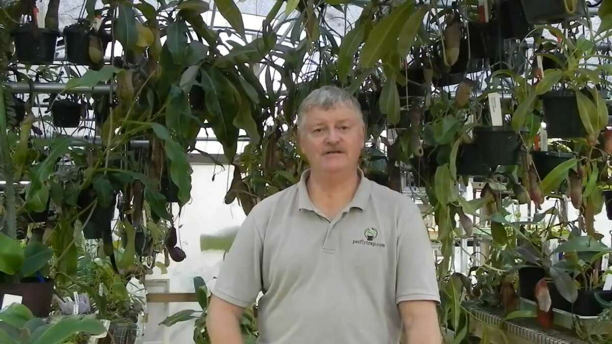 Mike Howlett of Spring said his video, which is available for viewing via Twitter @MikeHowlettPFT, talks about PetFlyTrap and how development of the business started.