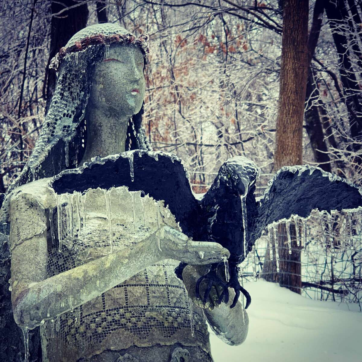 The recent ice storm enhances the beauty of this statue made - and photographed - by Judy Fenoff in her Ghent back yard.