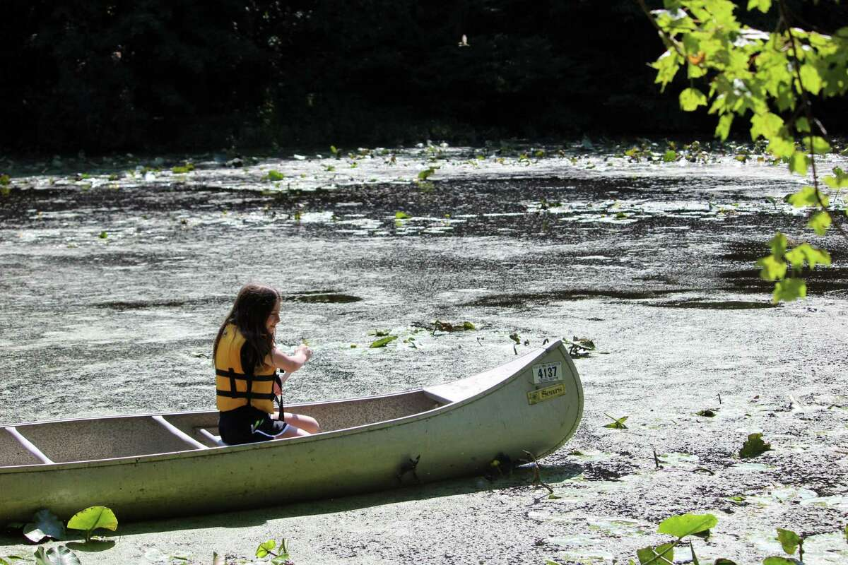 Campers enjoy hands-on activities at Woodcock Nature Center's Summer Camp on Aug. 9, 2017.