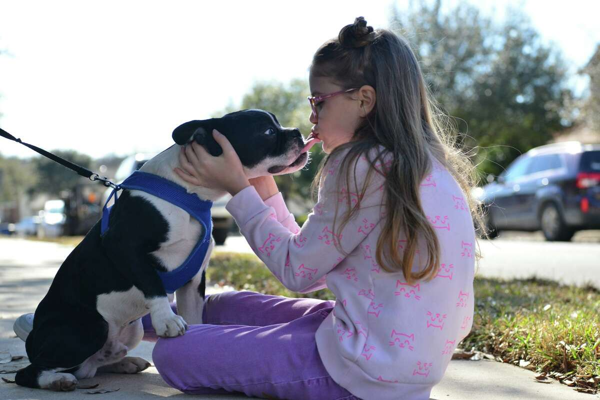 Charlotte Hartman, 8, plays with her dog Oreo in her Southwest Side neighborhood. The child has a way with animals that has people asking her for help in finding lost pets.