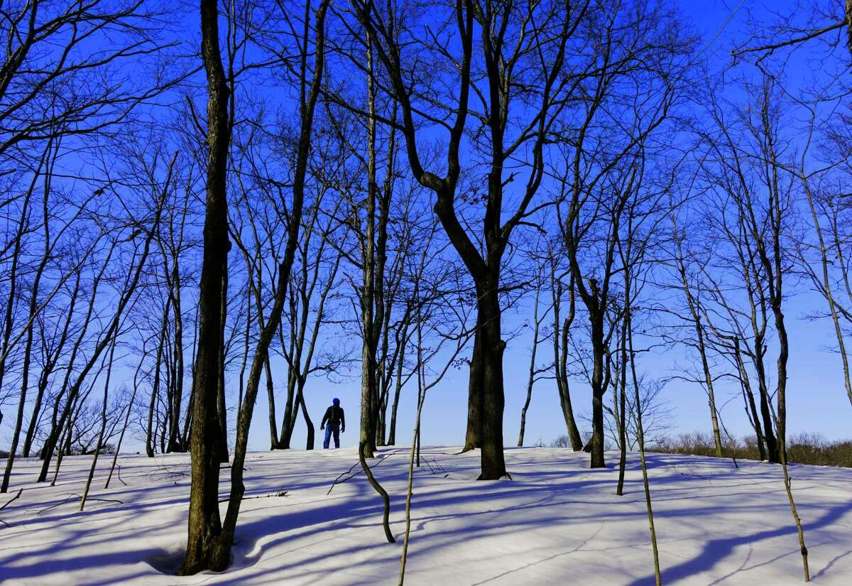 A hiker stops to take in the view along a trail through Peebles Island State Park on Sunday, Feb. 21, 2021, in Cohoes, N.Y. (Paul Buckowski/Times Union)