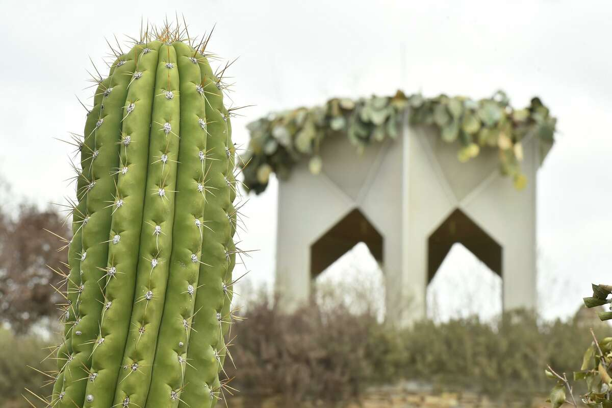 San Antonio ranks in the top cities for threesomes, but not for nude gardening.