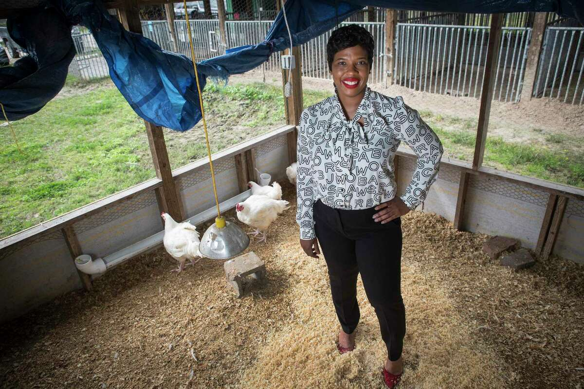 Andra Collins-Johnson, Aldine ISD agriculture teacher, says a high school counselor recommended she try an agriculture science class as a way to get her to focus on her studies. In 2005, Collins-Johnson became the first Black woman in Texas to teach high school agriculture and sponsor a Future Farmers of America chapter.