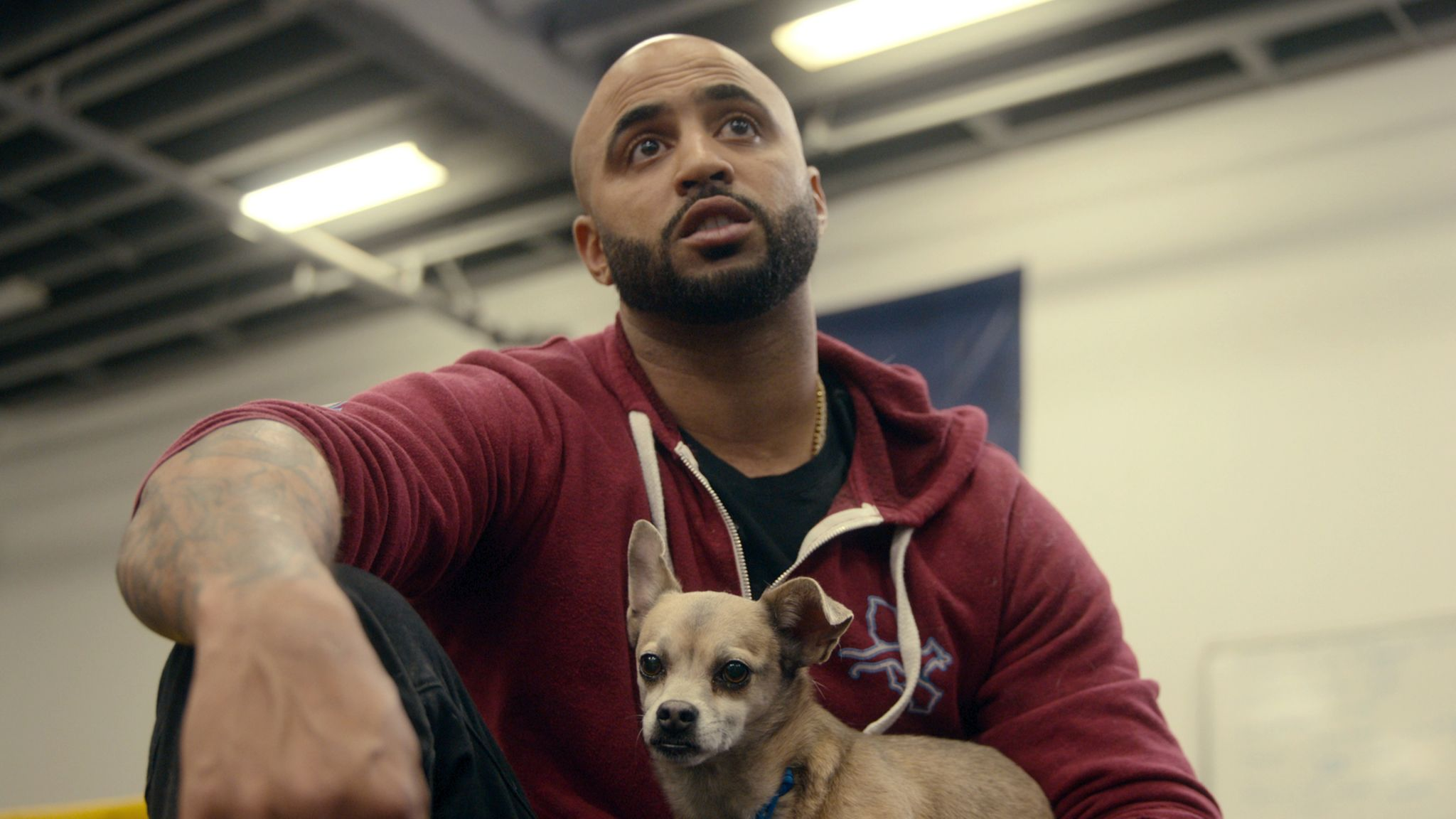 Netflix's 'Canine Intervention' features Oakland dog trainer to the stars