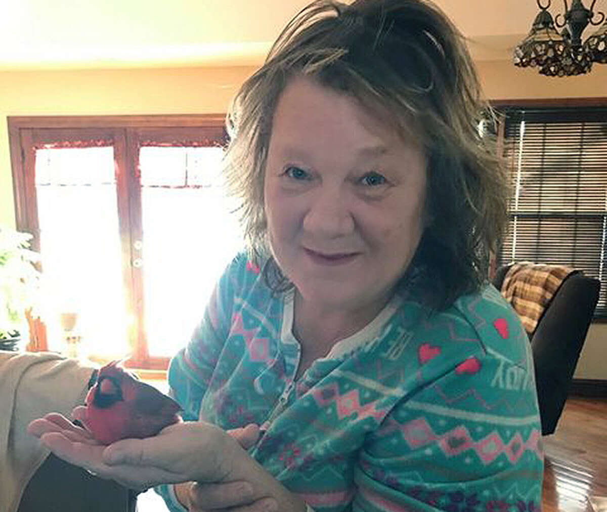 """Sharon VanBebber of Murrayville found a cardinal outside her home and invited him in. """"He was the most beautiful bird,"""" she said."""