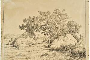 Théodore Rousseau, Cherry Tree at Plante-à-Biau (Le Cerisier de la Plante à Biau), 1862, printed 1921. Cliché-verre, gelatin printing-out print (courtesy: Clark Institute)