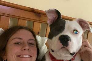 UAlbany athlete Kendra Harbinger rescued her dog Gus, who was hit in the head and lost an eye, when the pandemic started. (Provided)
