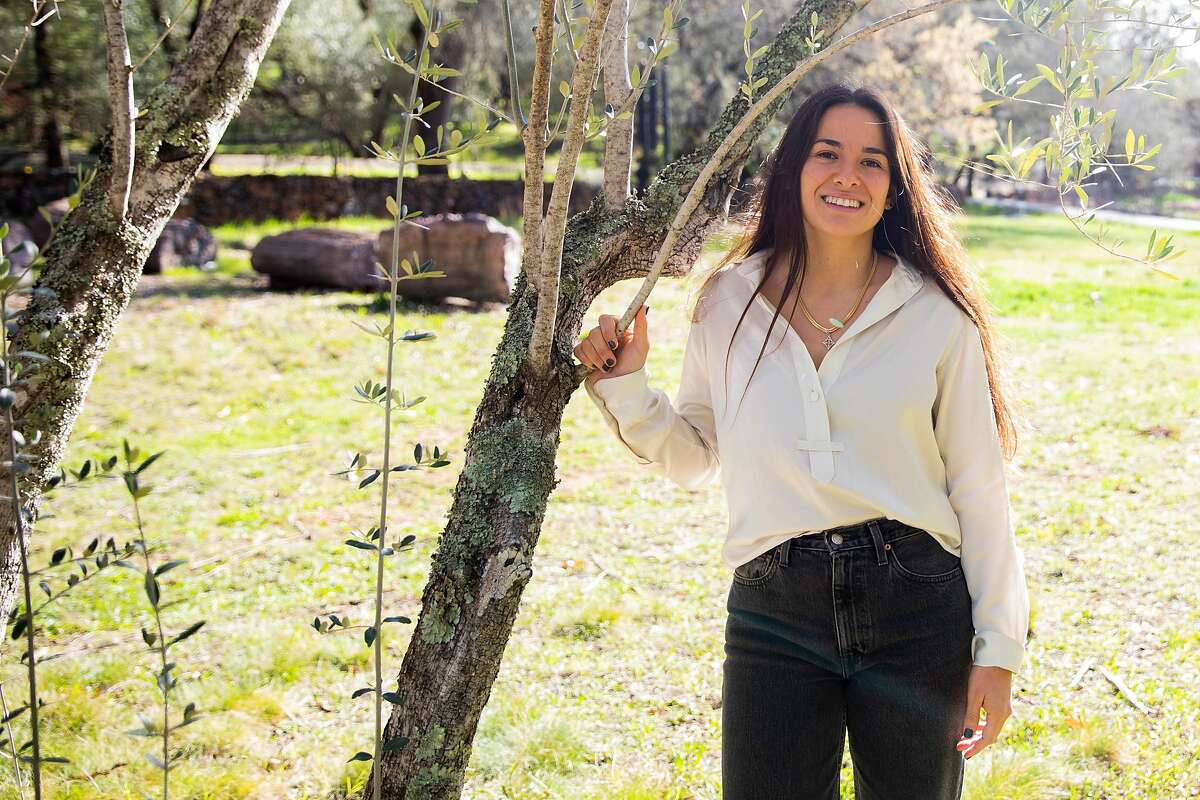 Grove 45 co-owner Marcela Hernandez stands among a grove of 19th century olive trees in St. Helena.