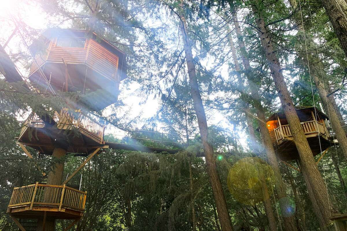 The Out 'n' About Treehouse Treesortis a network of narrow wooden suspension bridges connected by standalone platforms and tree-borne cabins with mossy roofs.