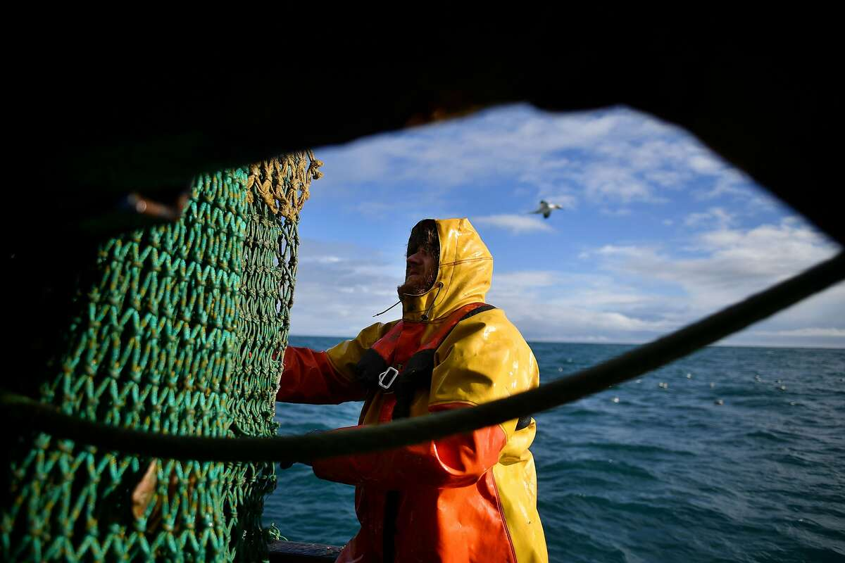 Plymouth fishing boat trawlerman Nick Hampshire guides the net as the first trawl of the day is landed off the southwest coast of England in February.