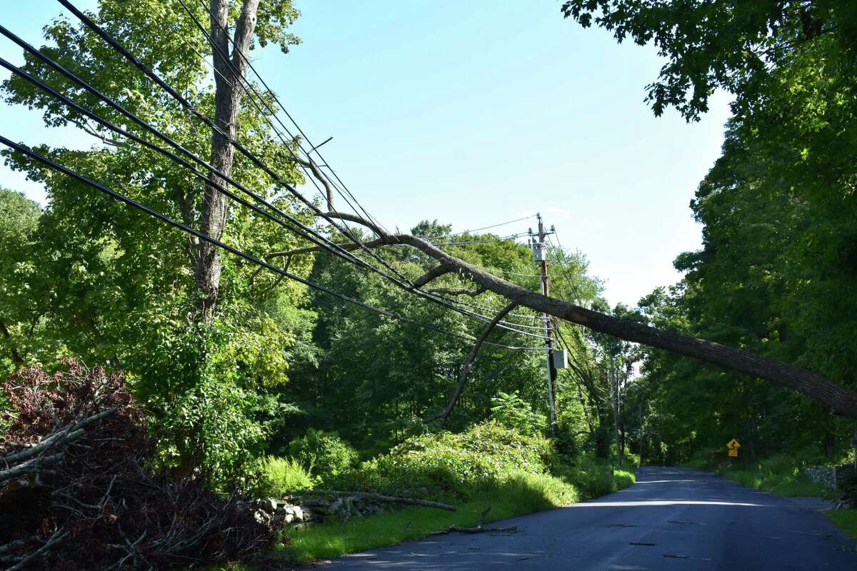 Four weeks after Tropical Storm Isaias devastated the Connecticut grid, a dead tree lies on power lines under blue skies and light breezes, on Sept. 1, 2020.