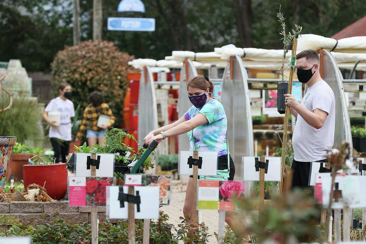 Katelyn Marshall and Devon Butler look to replace plants killed by the arctic storm earlier this month as well as new plants for their vegetable garden at Rainbow Gardens on Bandera Road.