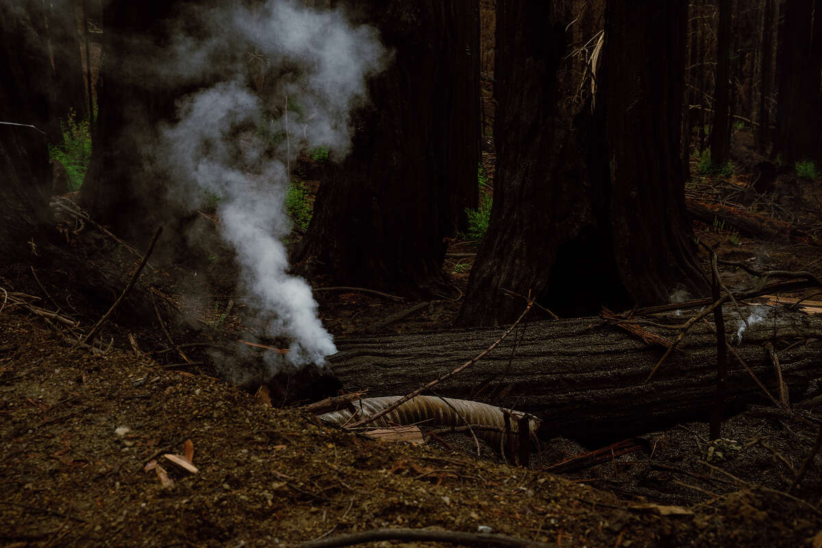 A log continues smoldering in the Santa Cruz mountains more than six months after the CZU Lightning Complex fires started.