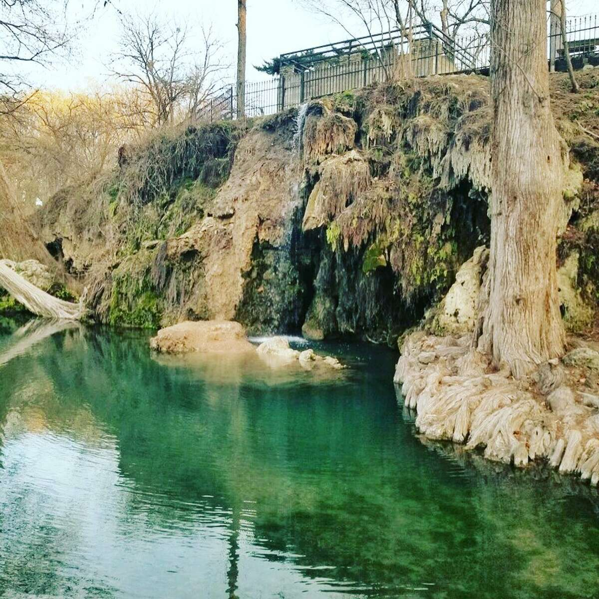 Popular Hill Country swimming and camping site Krause Springs opened on Monday and is ready for the public to enjoy its grounds.
