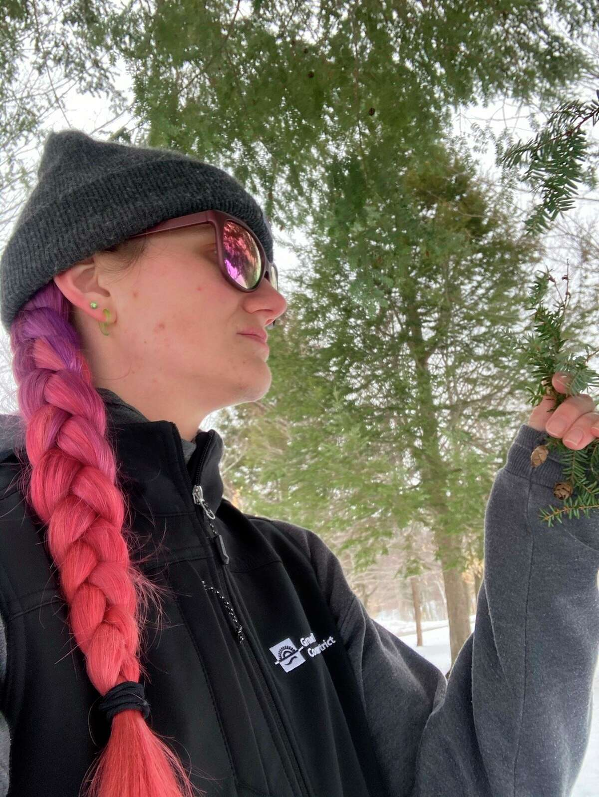 The Northwest Michigan Invasive Species Network (ISN) and partners are seeking survey assistance from community scientists afterthe hemlock woolly adelgid (HWA) was just discovered in northern Benzie County, within Sleeping Bear Dunes National Lakeshore. (Courtesy photo)