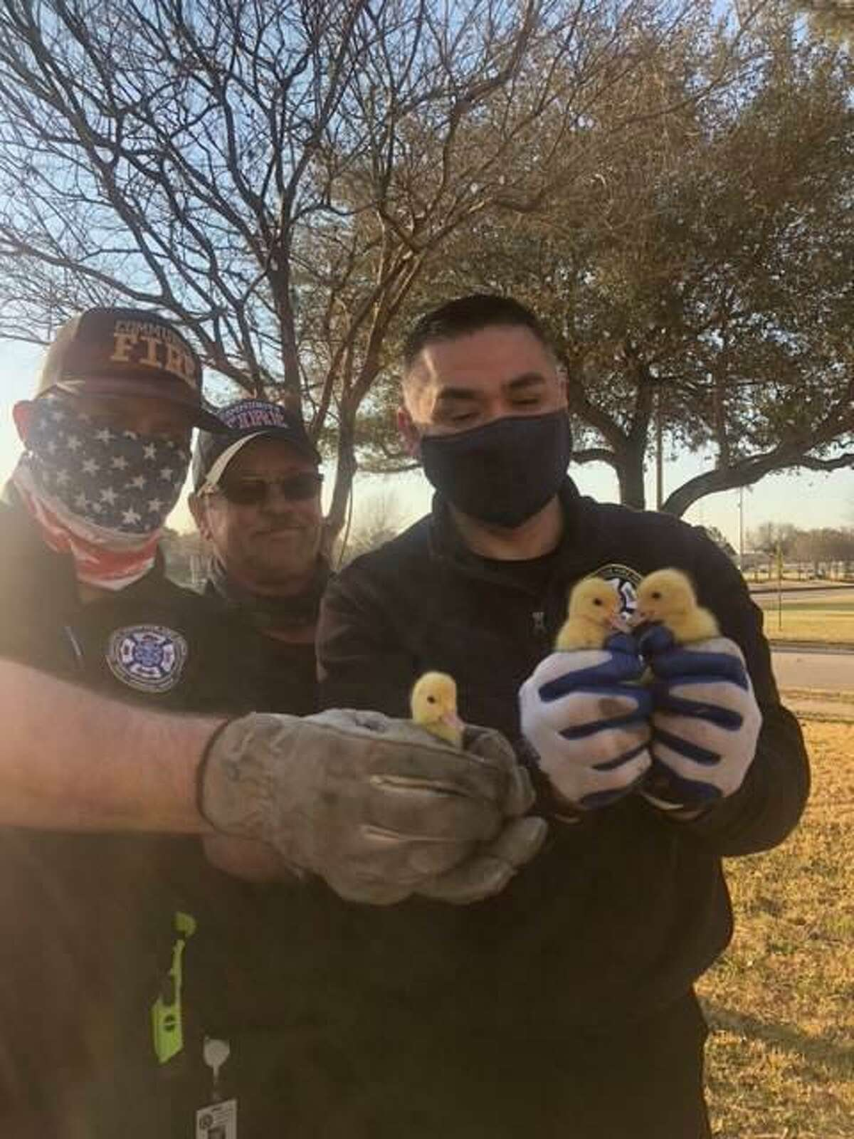 Firefighters from Community Volunteer Fire Department Station 3 rescued three ducklings from a drain outside Montessori House Elementary School in Richmond.