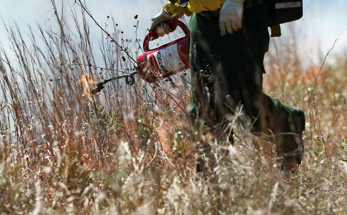 A firefighter uses a torch for a control prairie burn at UH Coastal Center in La Marque on Saturday, March 6, 2021.
