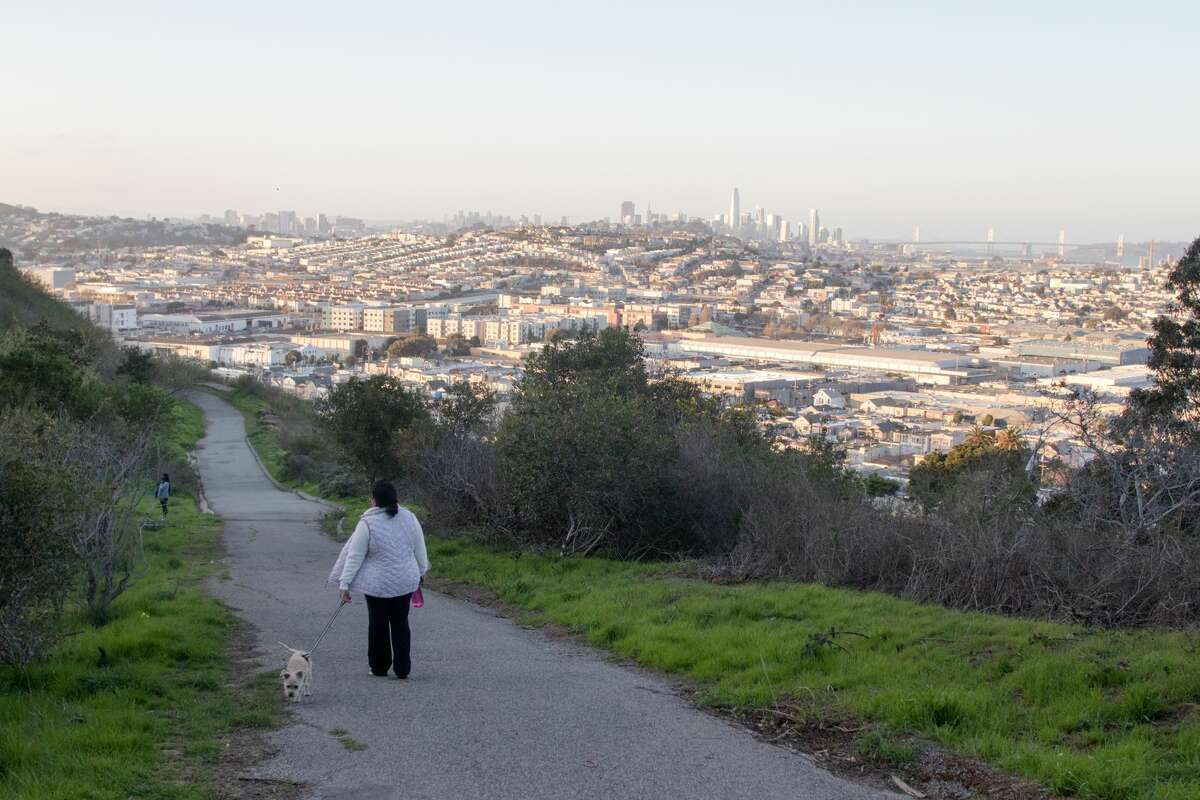A walker climbs the hill in Bayview Park in San Francisco on March 8, 2021.