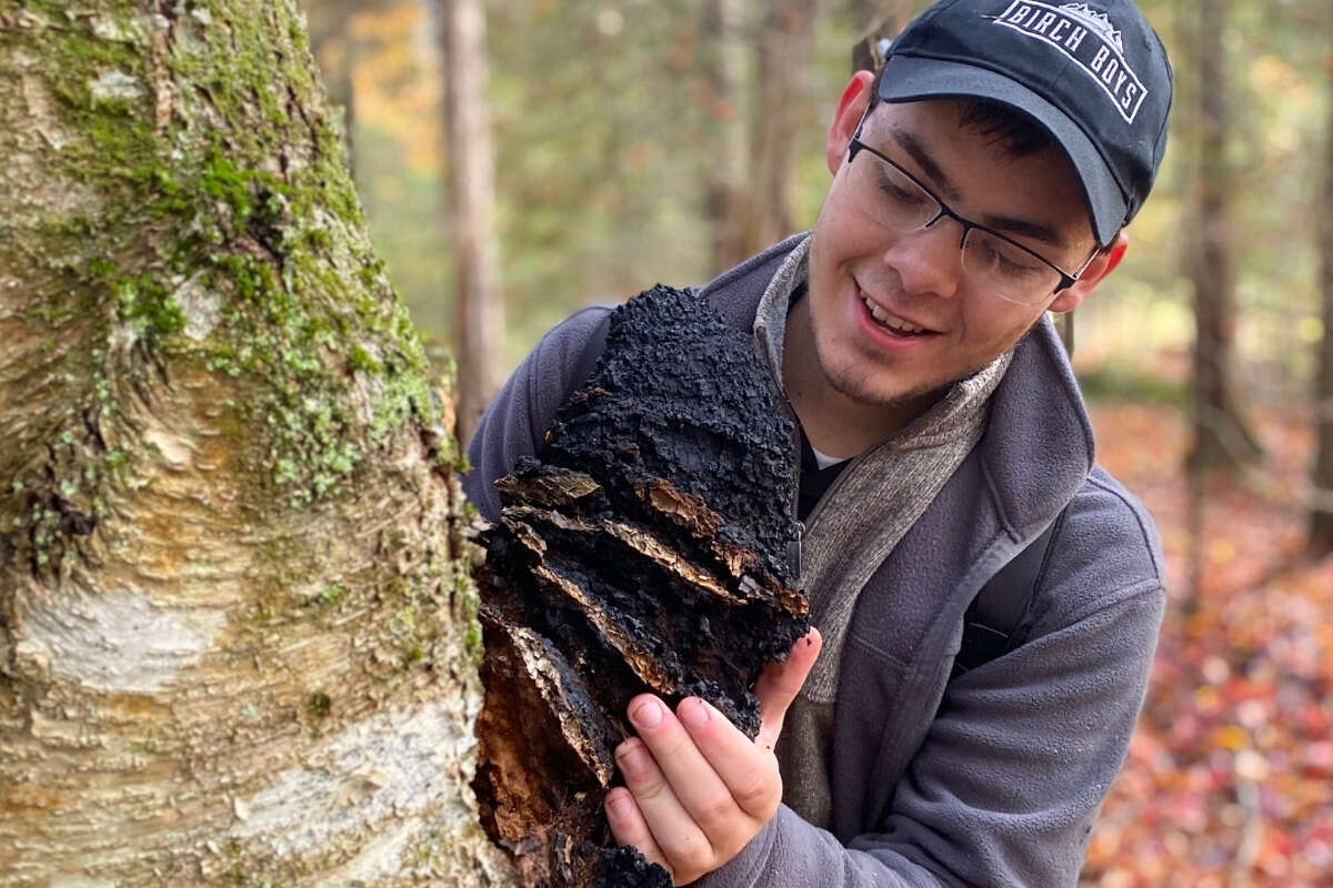 Garret Kopp is the 22-year-old founder and CEO of Birch Boys in the Adirondacks, where medicinal mushrooms like chaga, pictured, grow in abundance. Like many mushroom purveyors, 2020 was his best year of sales yet.