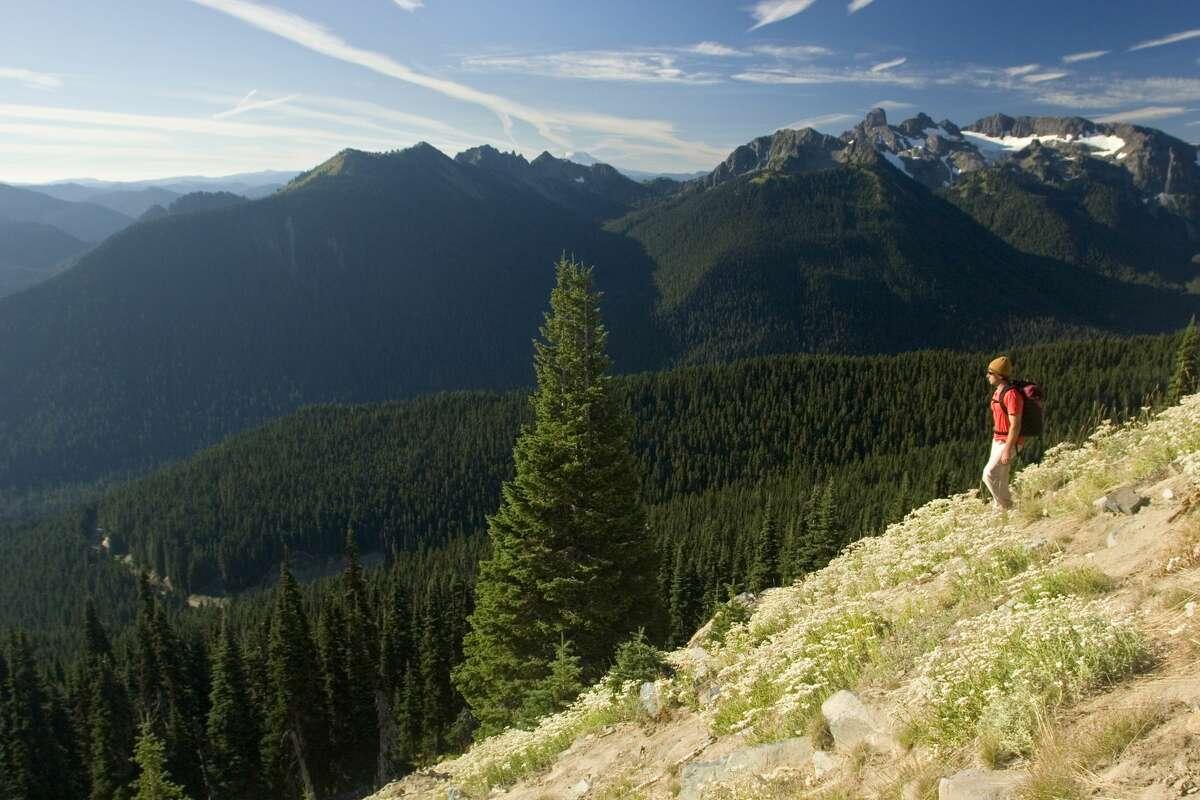 Person hiking in Washington's Cascade Mountains