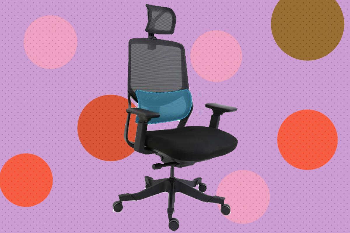 Soutien Ergonomic Office Chair for $259.99.