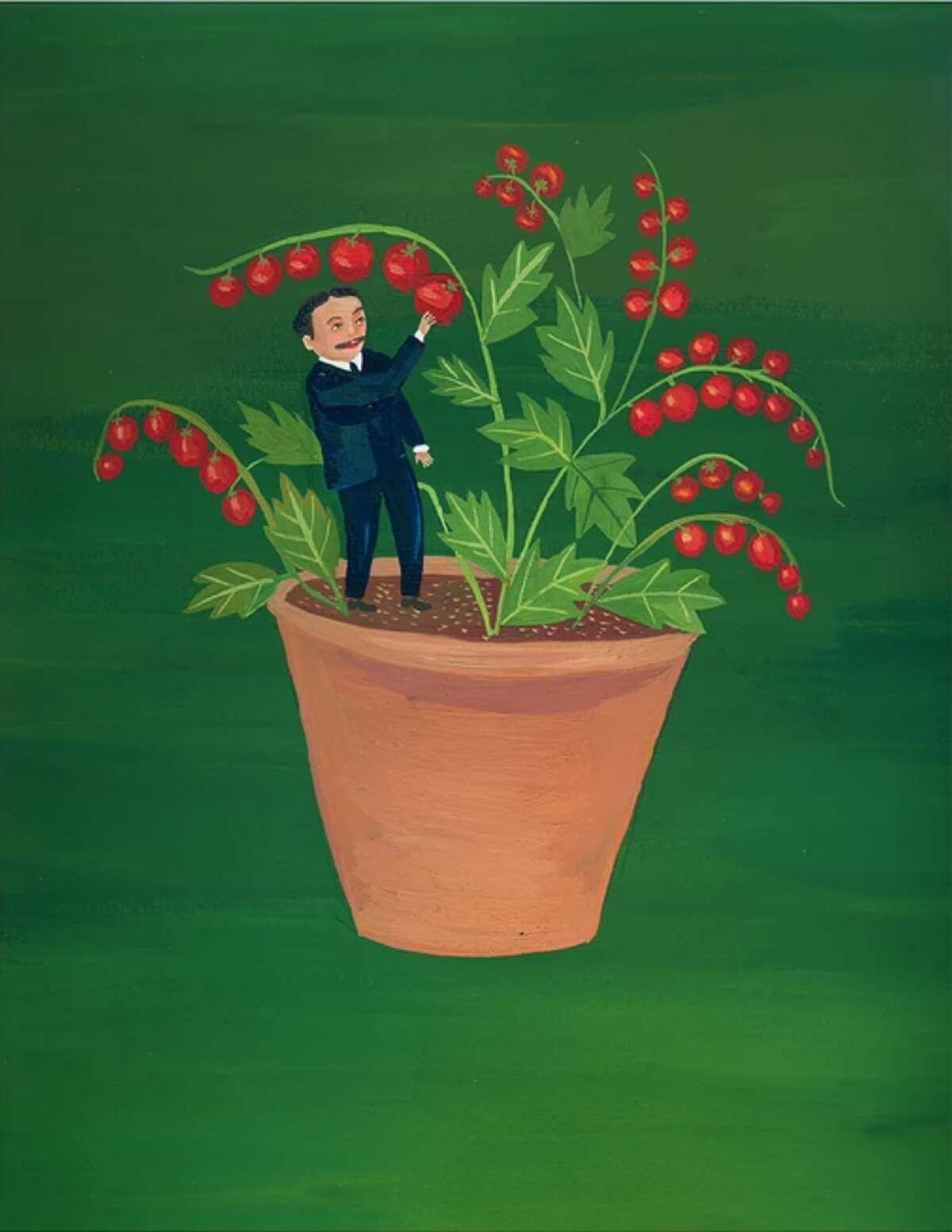 Children's book illustrator Giselle Potter designed this Art Pack for Tiny Tim Tomatoes in 2011.