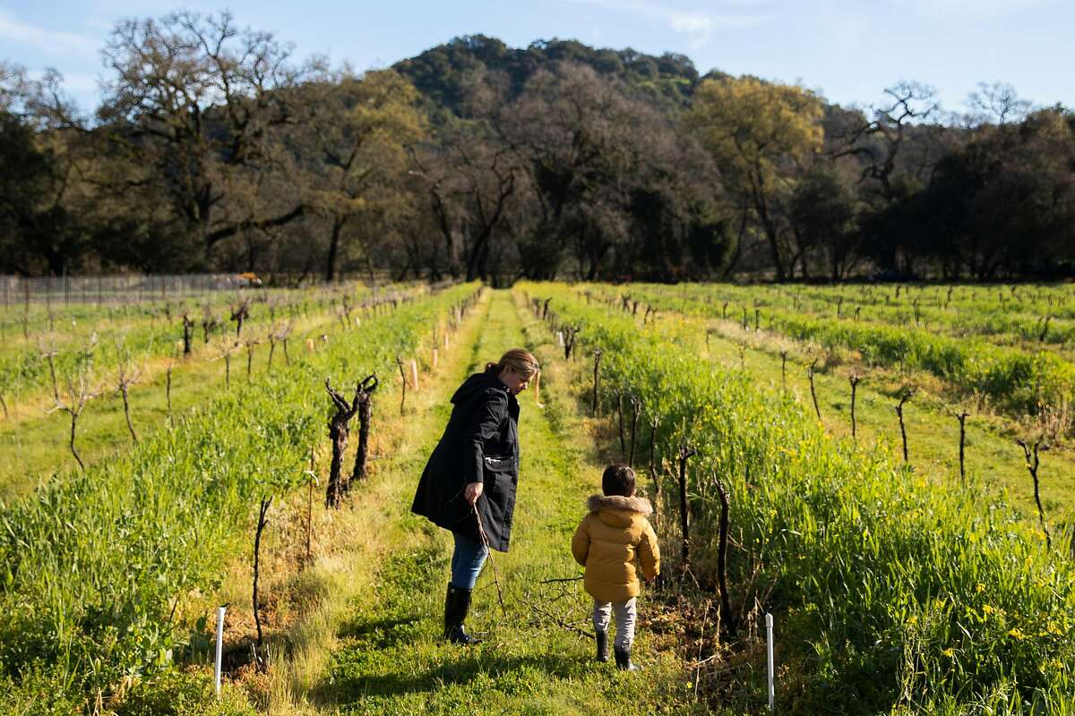 Lindsay Hoopes and her son, Rohan Aghera 3, walk through the vines at Hoopes Vineyard in Napa.