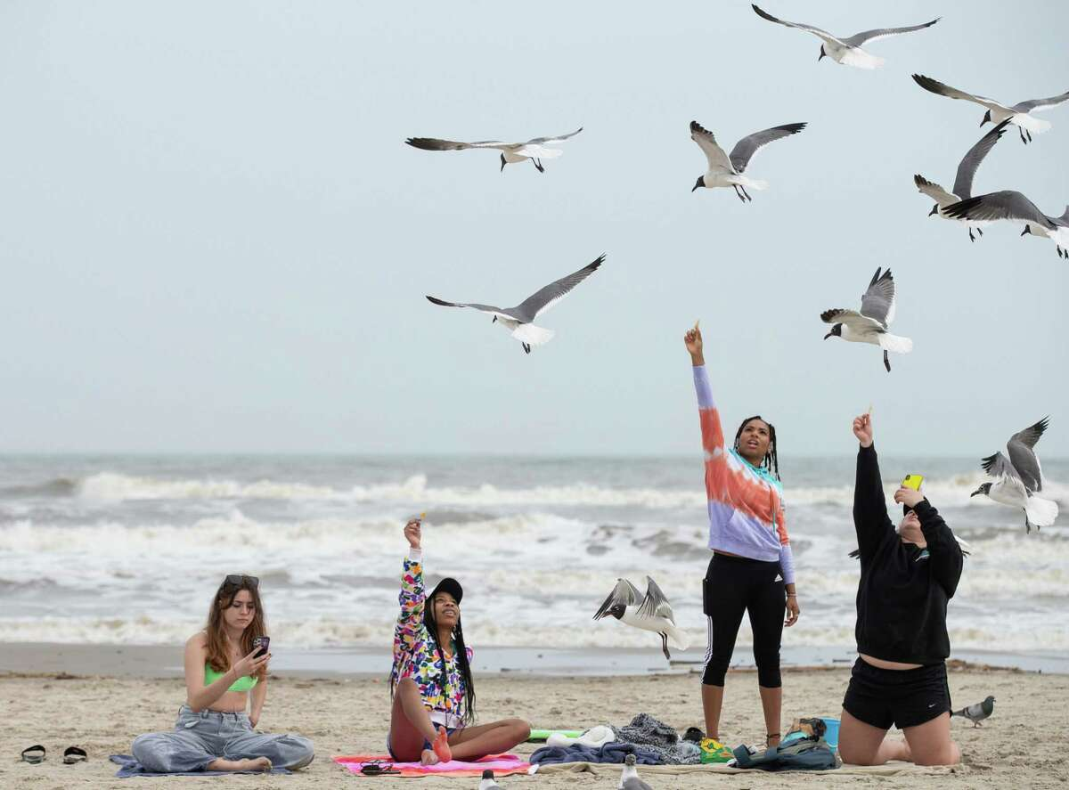 College students need a break this year, maybe more than ever. But they should look for safe alternatives to the crowded throngs on beaches and nightclubs. Here, a group of younger spring breakers - Allison Reeves, left to right, Ashtyn Buchanan, Kassidey McGee, and Gaby Betscher - find some space at the beach in Galveston on Thursday, March 11.