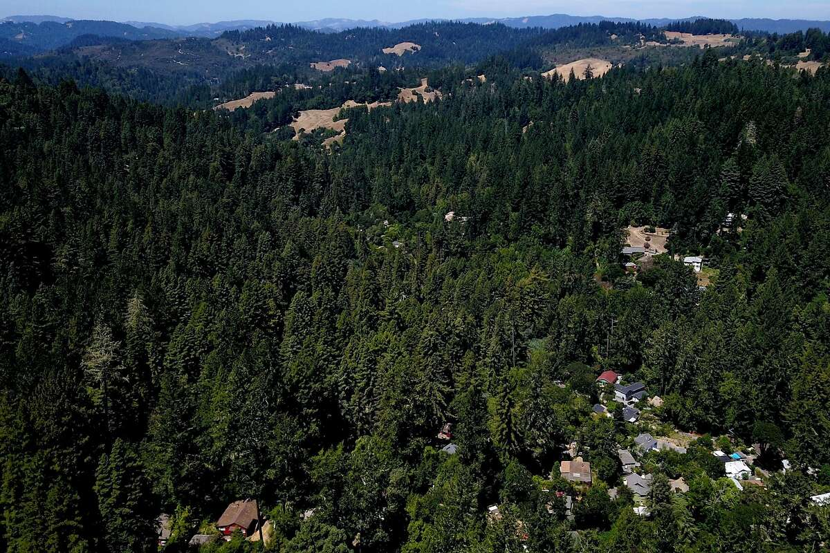 Camp Meeker (Sonoma County), Calif., on Wednesday, Aug. 7, 2019.