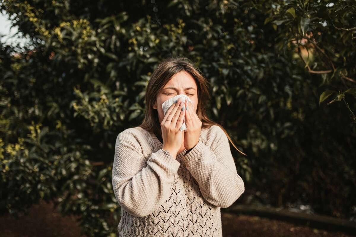 Allergy season begins in Seattle as pollen reaches high levels