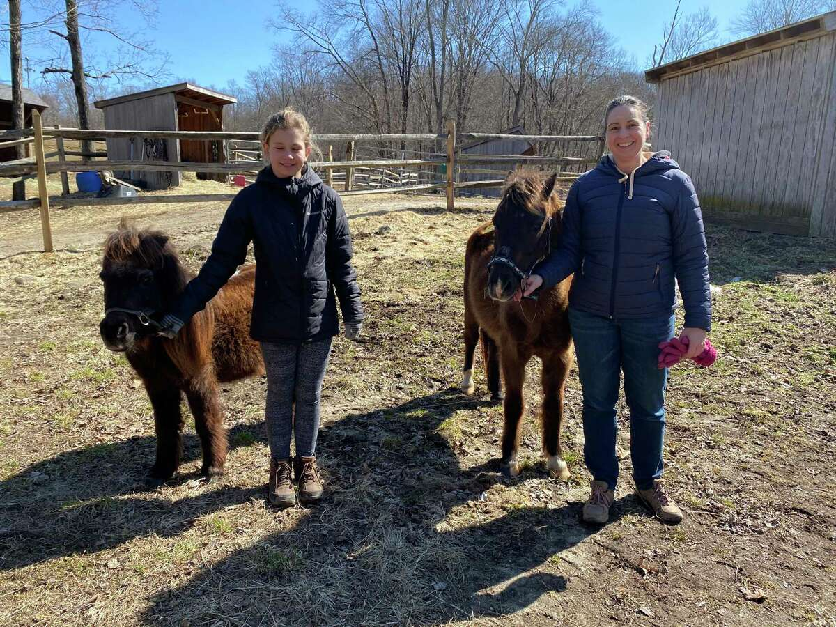 Wilton resident Carolyn Lemoine and her niece, 12-year-old Sadie Bora, of New Canaan, were caring for Dolly, a miniature horse; and a pony, who has not yet been named.
