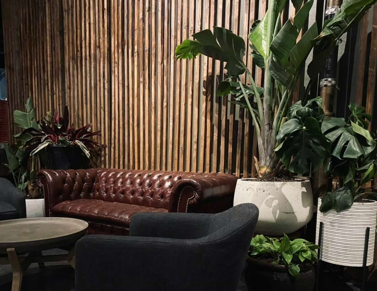 The interior of Propagation, a new bar in Lower Nob Hill, features plenty of foliage to enjoy alongside its cocktail menu.