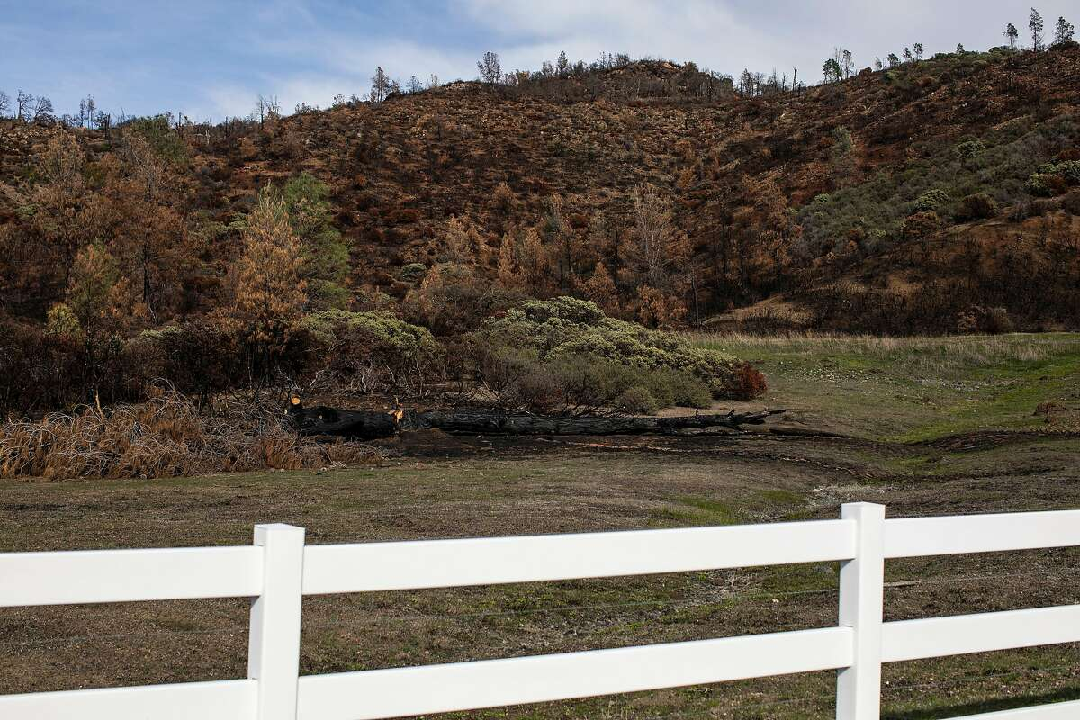 Burns scars left by the LNU Complex fire in Lake County. Last month, the Attorney General's Office intervened in a lawsuit against Lake County, claiming that plans for the 1,400-home Guenoc Valley Project were moving forward without adequate review of fire danger.