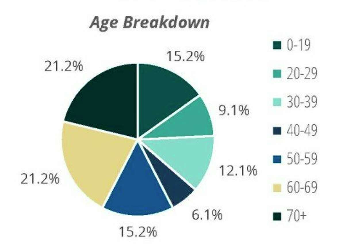 42.4% of the February cases in Manistee County were people age 60 and older, according to the county profile from District Health Department #10. (Screenshot from DHD#10 website)
