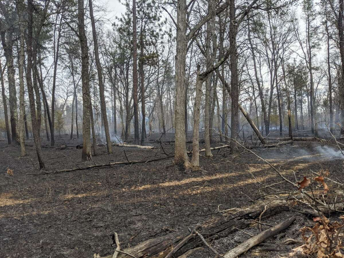 Fire crews responded to a 600-acre wildfire near Warfield Road in Manistee County Monday.