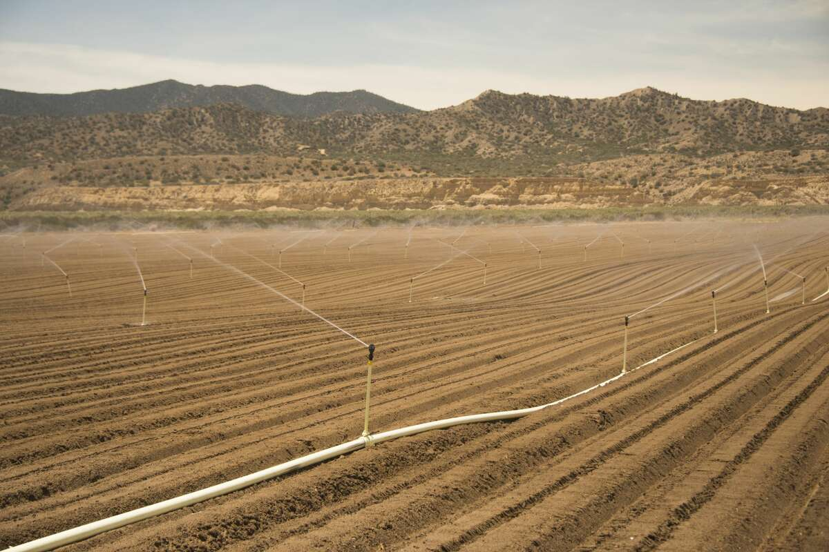 Irrigating fields on the edge of the desert in the Cuyama Valley.