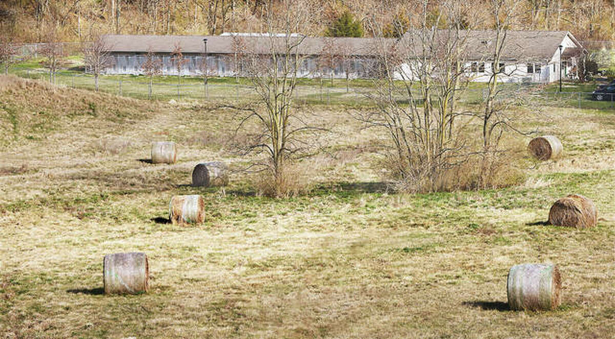 The Alton Area Animal Aid Association kennel, above, occupies the northern edge of the old Alton Landfill site. The rest of the property is now a planned solar facility which could possibly occupy more than 40 acres of land.
