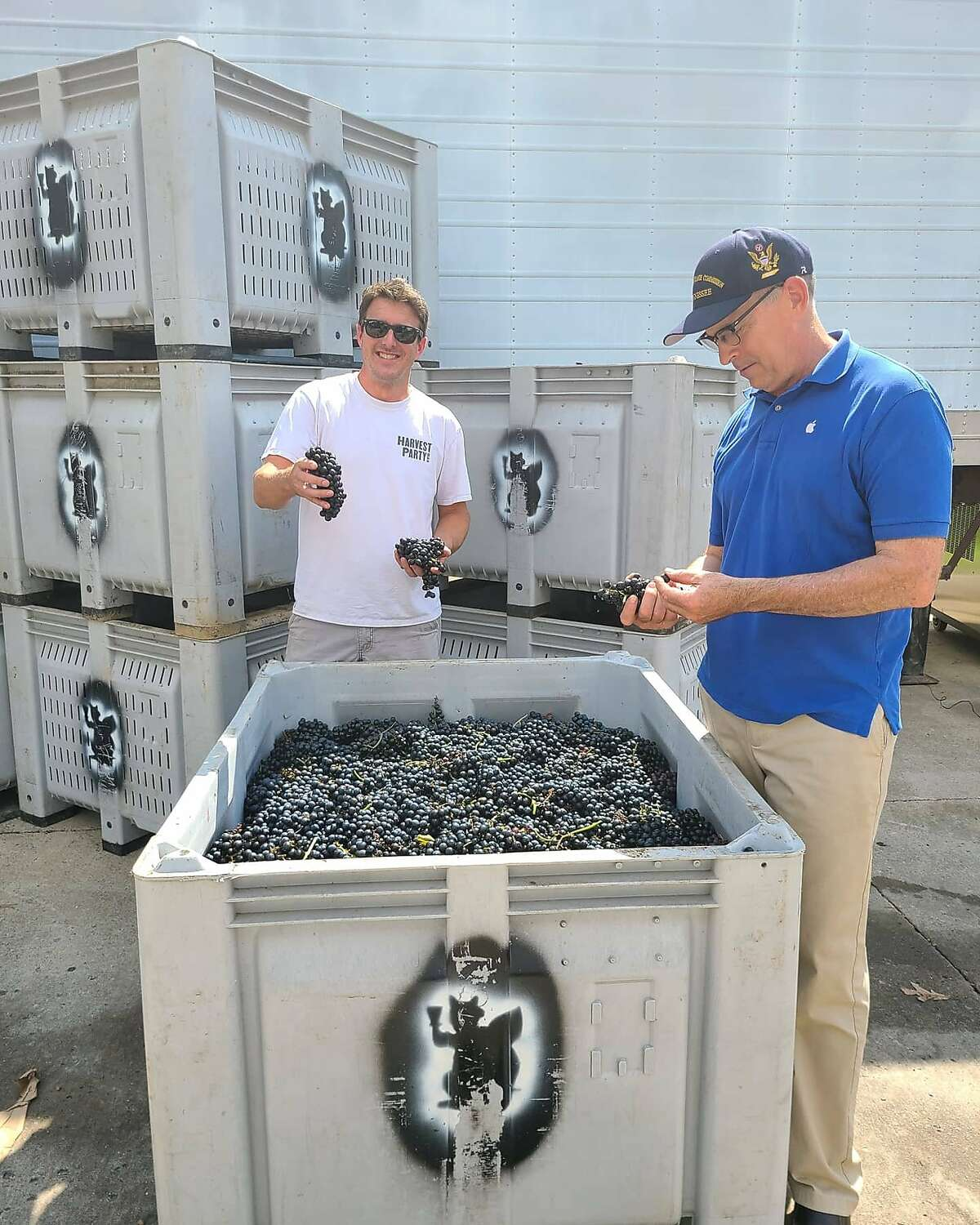 Arrington Vineyards of Nashville, Tennessee grows hybrid grapes and also sources grapes from the West Coast.