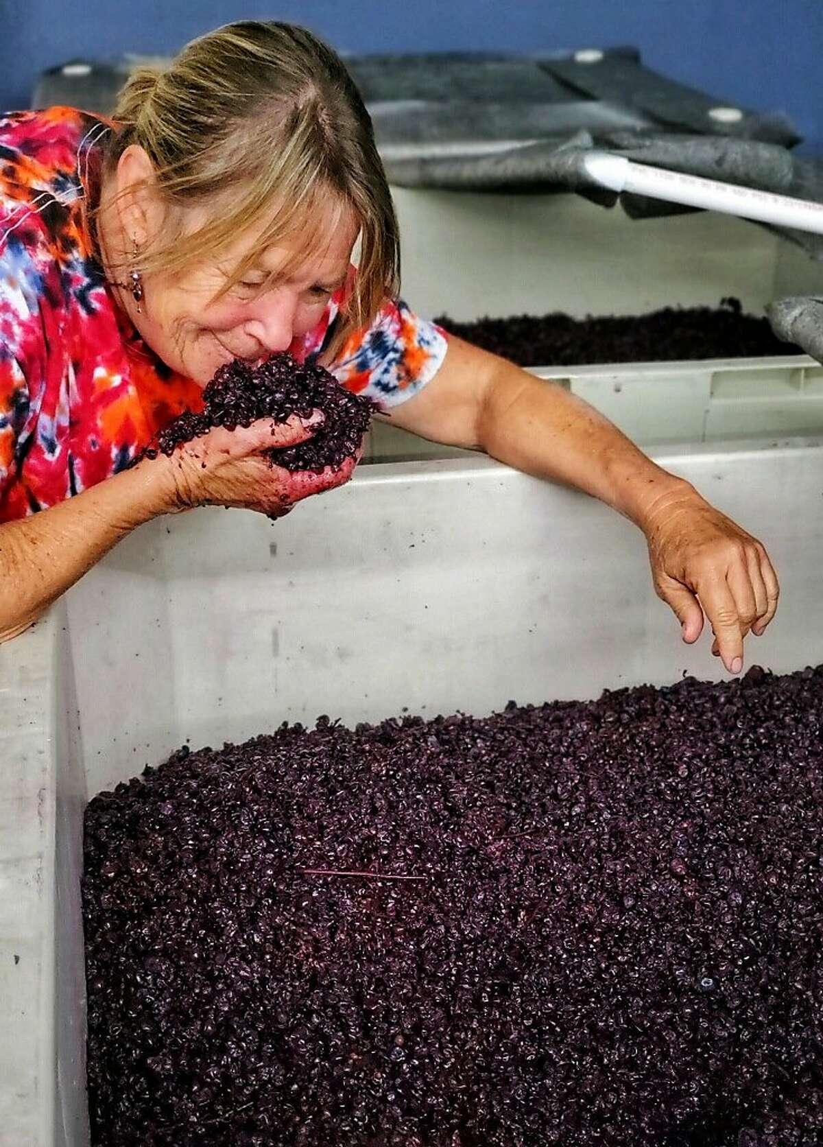 Wood Family Vineyards owner Rhonda Wood smells grapes during harvest.