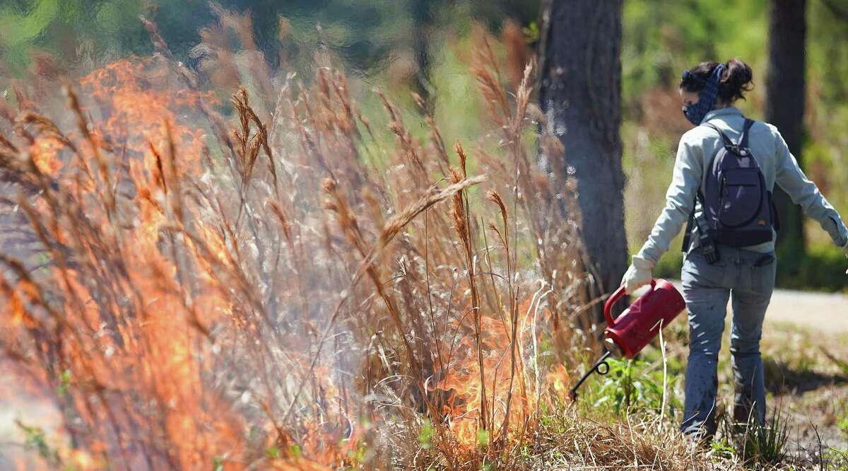 Kelli Ondracek, natural resources manager for City of Houston, torches are area during a prescribed fire with the Houston Fire Department and Texas Parks & Wildlife Department on approximately seven acres at the Houston Arboretum on Thursday, March 25, 2021.