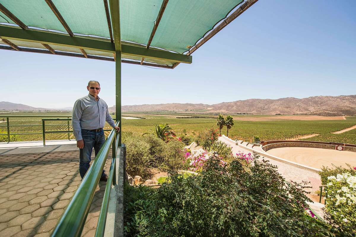 CEO Luis Alberto Cetto poses for a portrait at his winery, L.A. Cetto, which is one of the largest producers of Baja California wine.